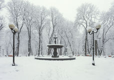 Winter city park Royalty Free Stock Photo