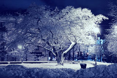 Winter city park Stock Image