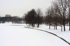 Winter city park snow. Day royalty free stock photography