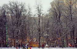 Winter city park with a snow Stock Image