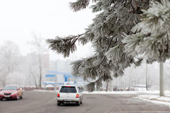 Winter in the city Royalty Free Stock Photo