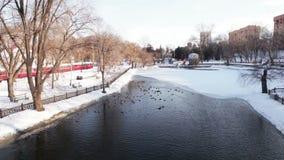 Winter city pond stock footage