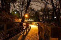 Winter city. Stock Photo