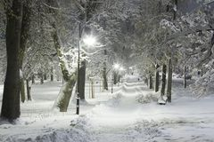 Winter in the city, snow-covered trees and signs, white streets and sidewalks royalty free stock images