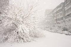 Winter city yard Stock Photo