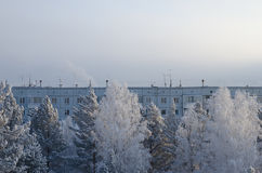 Winter cityscape with a block and trees Stock Photography