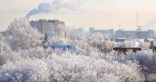 Winter cityscape. Frosty December. Stock Image