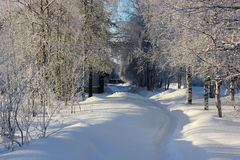 Winter cityscape. In the north of Russia Stock Photography
