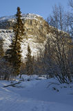 Winter cliff. High cliff in Khibiny, shot from winter forest Royalty Free Stock Image