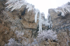 Winter cliff Royalty Free Stock Photography
