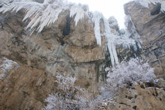 Winter cliff Royalty Free Stock Photos