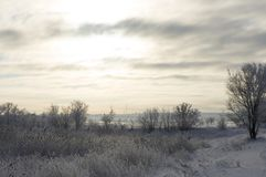 Winter cloudy morning in nature royalty free stock image