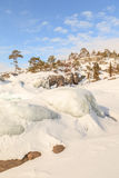 Winter, coast of the frozen lake In the sunny day. Stock Photography