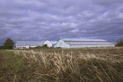 Winter Coastal Farm Land Royalty Free Stock Photo