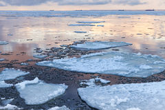 Winter coastal landscape with big floating ice fragments Royalty Free Stock Photos
