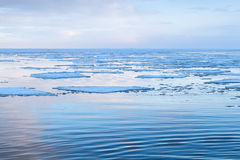 Winter coastal landscape with big floating ice fragments Stock Photos