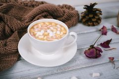Winter coffee in a ceramic cup with marshmallow, warm scarf Royalty Free Stock Image
