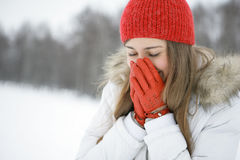 Winter cold Royalty Free Stock Image