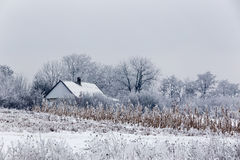 Winter cold day in a village Stock Photography