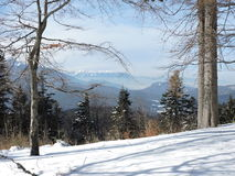 Winter and cold. Lanscape from Baiului Mountains to Bucegi Royalty Free Stock Photo