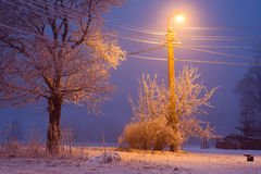 Winter cold night with lamp Stock Photo
