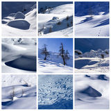 Winter collage. A collage of photos about winter time Royalty Free Stock Images
