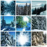 Winter Stock Photos