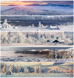 Winter collage with Christmas landscape for banners. Winter collage with 5 different Christmas landscape for banners Stock Photo