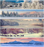 Winter collage with Christmas landscape for banners. Winter collage with 5 different Christmas landscape for banners Royalty Free Stock Photo