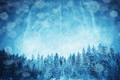 Winter collage Royalty Free Stock Photo
