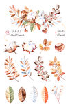 Winter collection with 13 hand painted watercolor elements + 1 winter bouquet Royalty Free Stock Photo