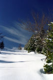 Winter colors. Specific winter colors at mountain: pure white, clean green, grey of dedidous trees, blue of the sky and fresh air Royalty Free Stock Photography