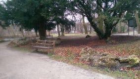 Winter colours. English garden Munich Stock Photos
