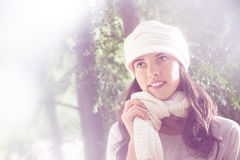 Winter comes Royalty Free Stock Images