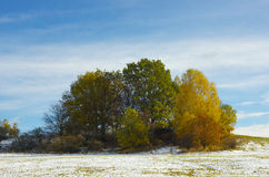 Winter is coming. Coming winter with colorful autumn Royalty Free Stock Images