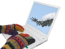 Winter is coming. Woman in wool gloves typing on a laptop; winter photo on the screen Royalty Free Stock Photography