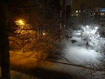 Winter is coming a bit late but is every thing alright ?. New snow is beautiful here in Espoo Finland. And tress are feely a little bit cold, I suppose royalty free stock images