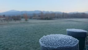 Winter is coming. Frost meadow. Winter is coming. Escarcha Stock Image