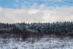Winter is coming Royalty Free Stock Image