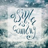 Winter is coming lettering  on landscape with frozen trees and plants at beautiful sky background Stock Photo