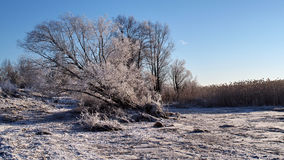 Winter and snow no trees Royalty Free Stock Photos