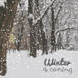 Winter is coming. Winter background. Hello December. Winter background, Greeting Card. Typographic design Stock Image