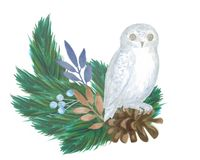 Winter composition of fir branches, cones, red berries, leaves with an owl,. Christmas Watercolor Card vector illustration