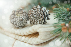 Winter composition with fir branches and cones on the white knitted hat stock photo