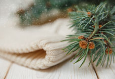Winter composition with green branches and white knitted hat stock image