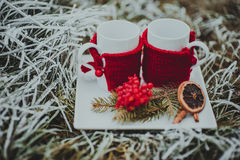 Winter composition Stock Images