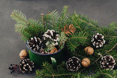 Winter composition from spruce branches, pinecone, nuts in vintage mug on dark background Royalty Free Stock Photo