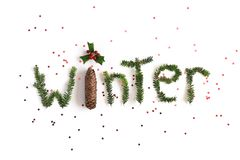 Winter composition. Word Winter made of different winter plants on white background. Flat lay, top view. royalty free stock photo