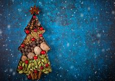 Winter concept with Christmas spices royalty free stock photography