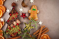Winter concept with Christmas spices stock image